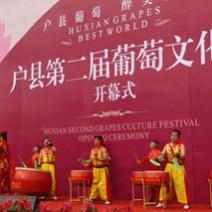 荣华地产户县第二届葡萄文化节